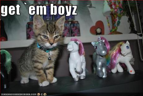 Get em' Boyz